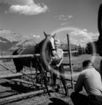 ronr_sc04_set_by_ray_o_neill_in_jasper_010_1