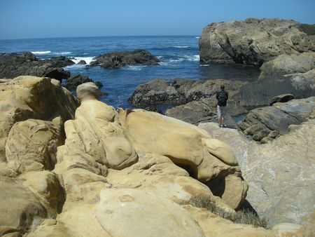 point lobos dave2
