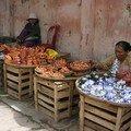 Vendeuses de poteries à Hoi An