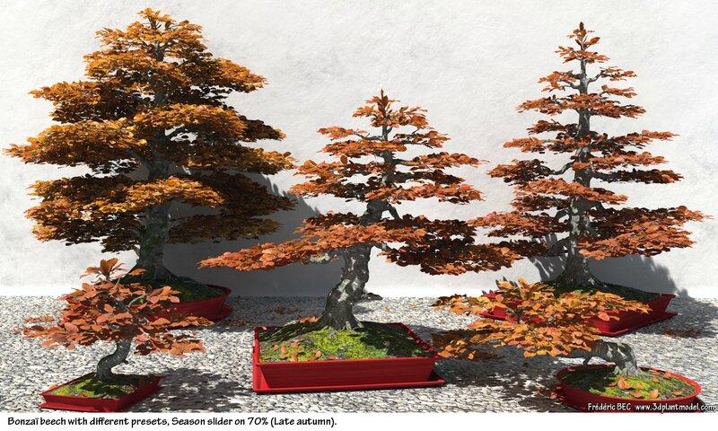 03 Fagus sylvatica bonzaï beech tree 3d plant model factory 3ds cad max fbx obj image 2