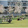Parc de Billancourt B