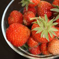 Mousse au chocolat et fraises sur un lit sablé