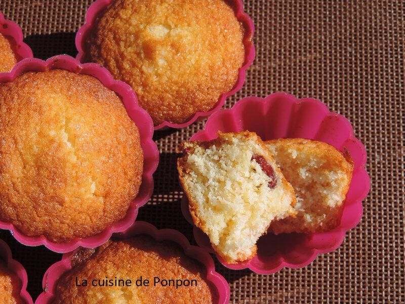muffin noix de coco et cranberries (12)