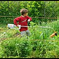 Au jardin en mai