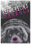 affiche_reflexions_canines