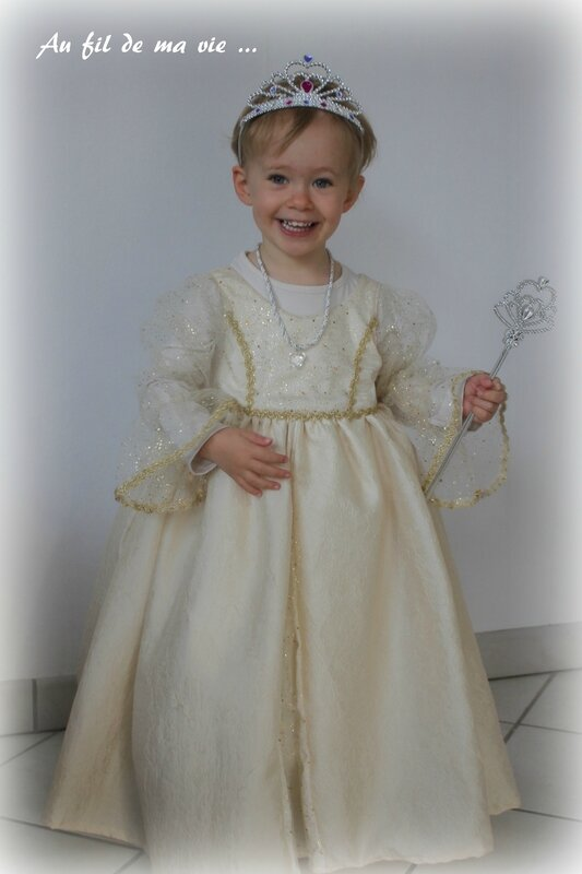 Robe princesse Peau d'ane ICdF Home made02