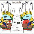 La réflexologie des mains