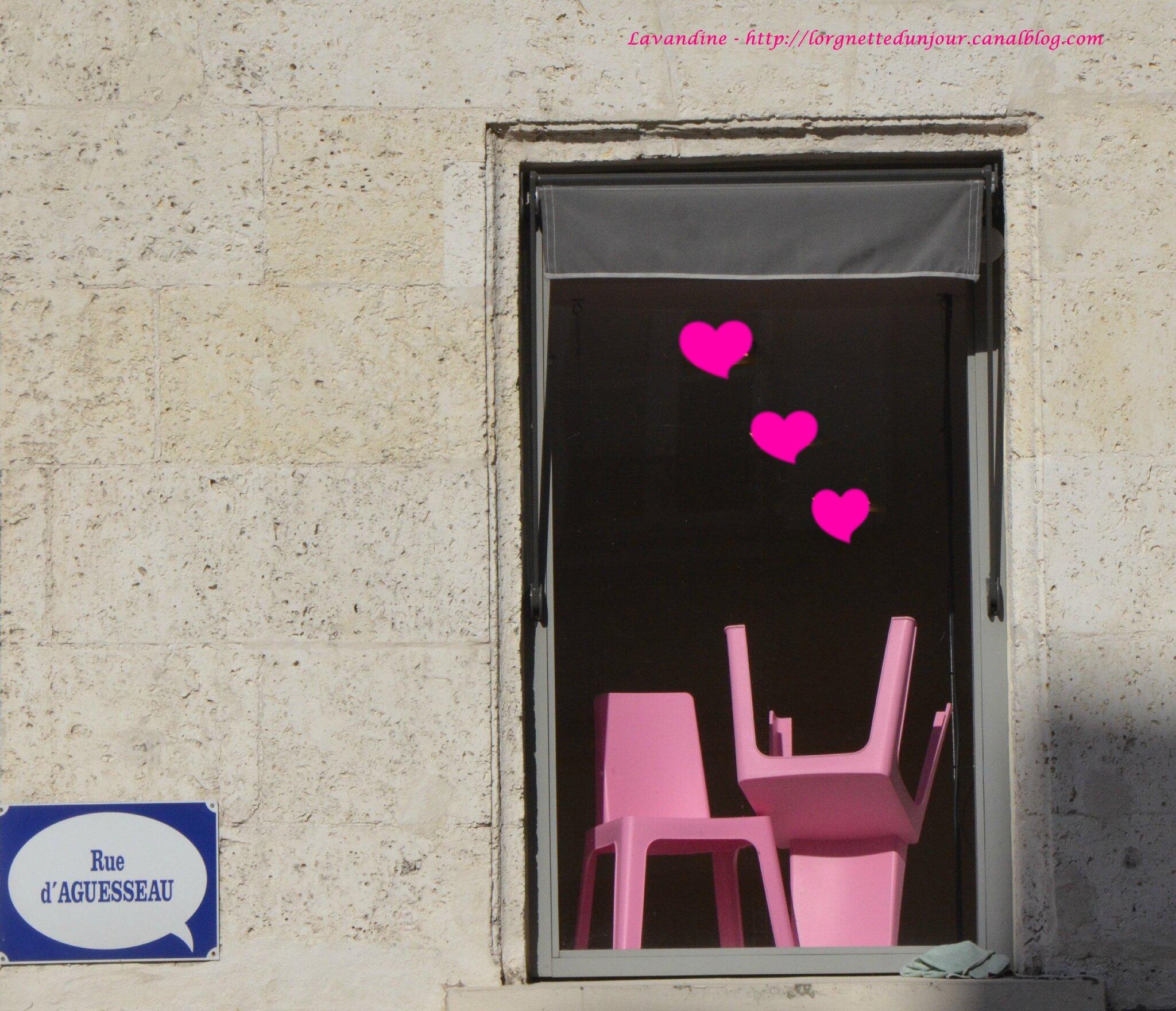 15/11/14 : La photo du mois # 32 : Voir la vie en rose