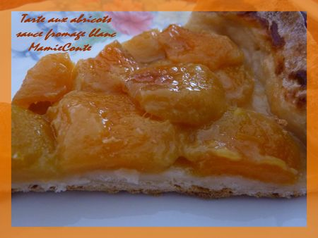 tarte_abricot_pate_fromage_blanc1