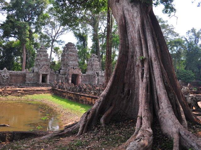 Cambodia 572