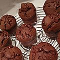 Muffins chocolat