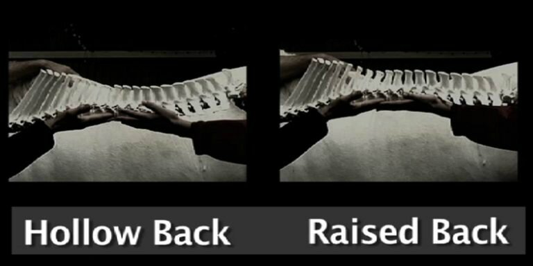 spine-hollow-back-raised-back-768x384