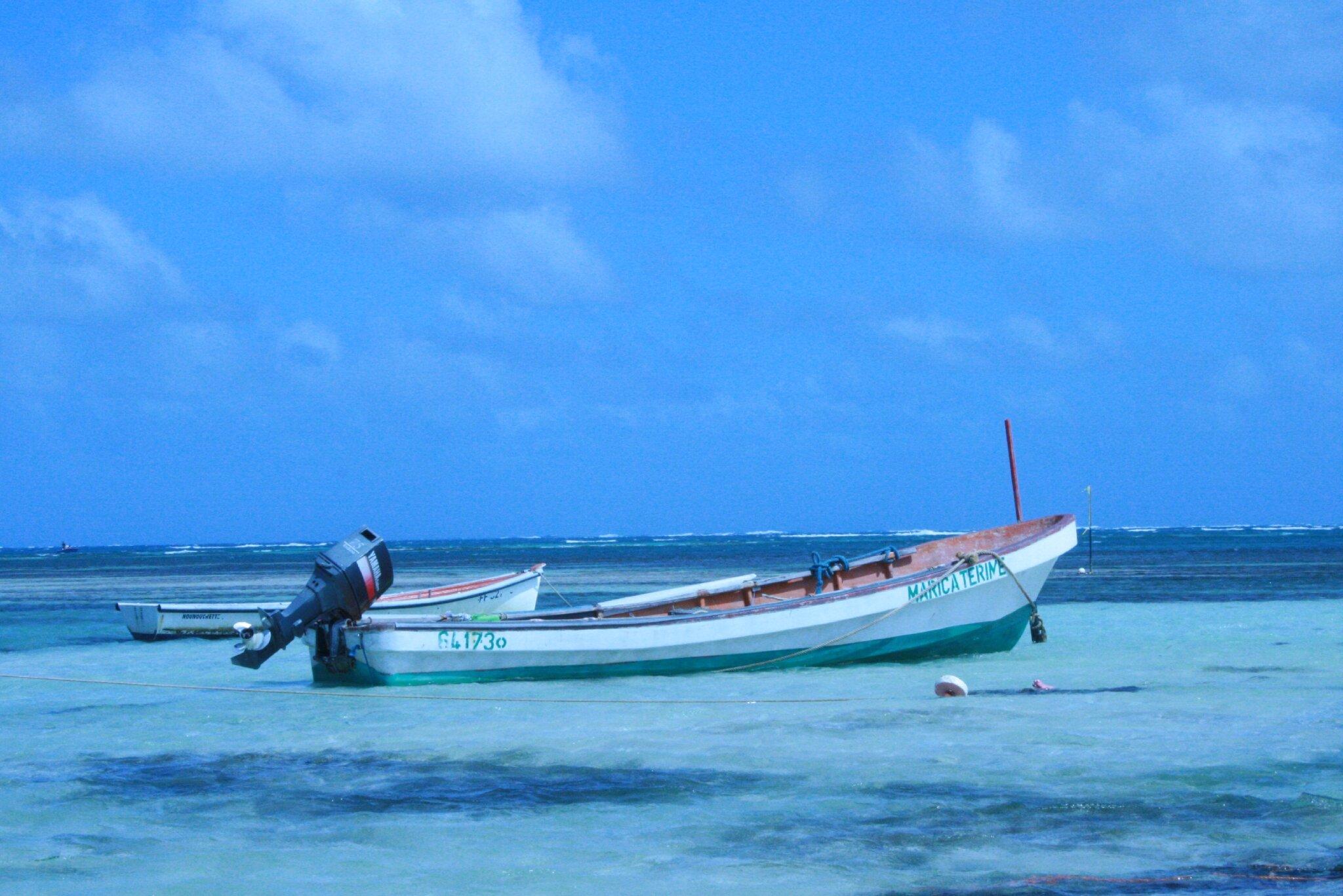 Martinique Fev 2009 023