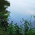 Balade au Lac 150816