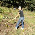 Rde jardin 6nov2010 006