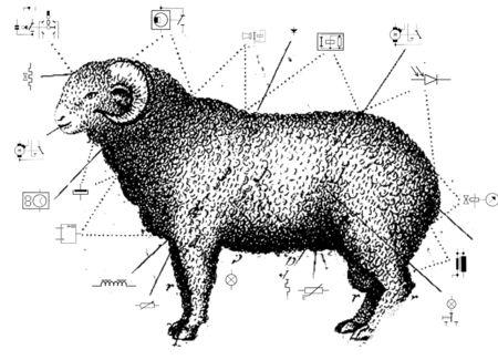 mouton_elec