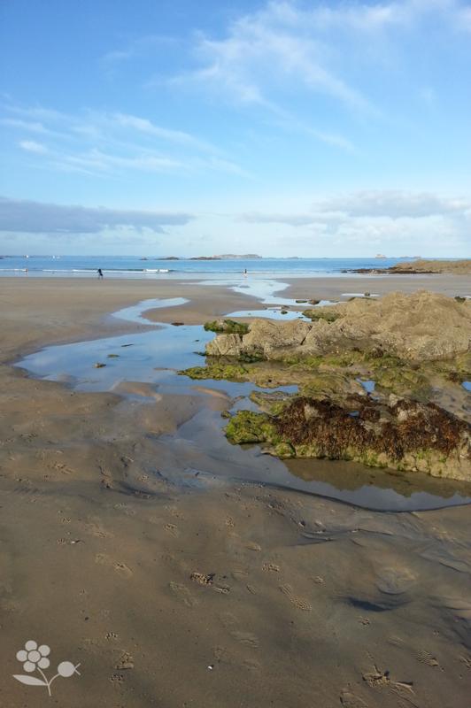 Saint Malo, plage à marée basse_1