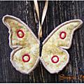 Papillon_3