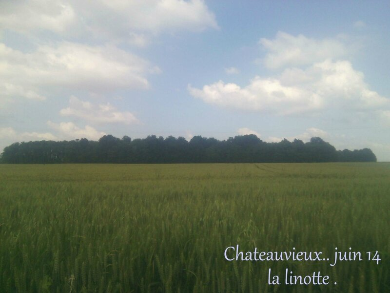 chateauvieux 1