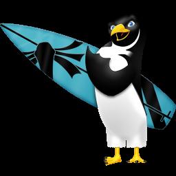 dunedhel-pingouin-surf-15782