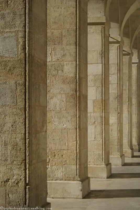 COurs M colonnes