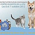 Spa- week-end de l'adoption...