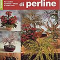 Fiori e bonsai di perline
