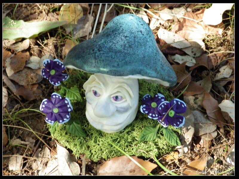 champignon magique dernier