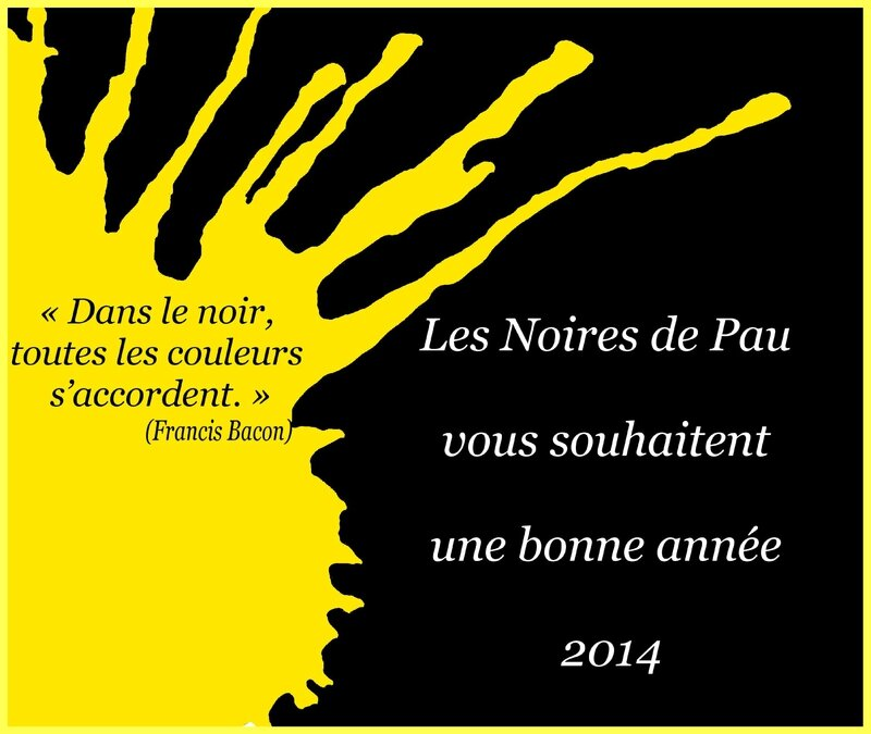 voeux 2014 NDP