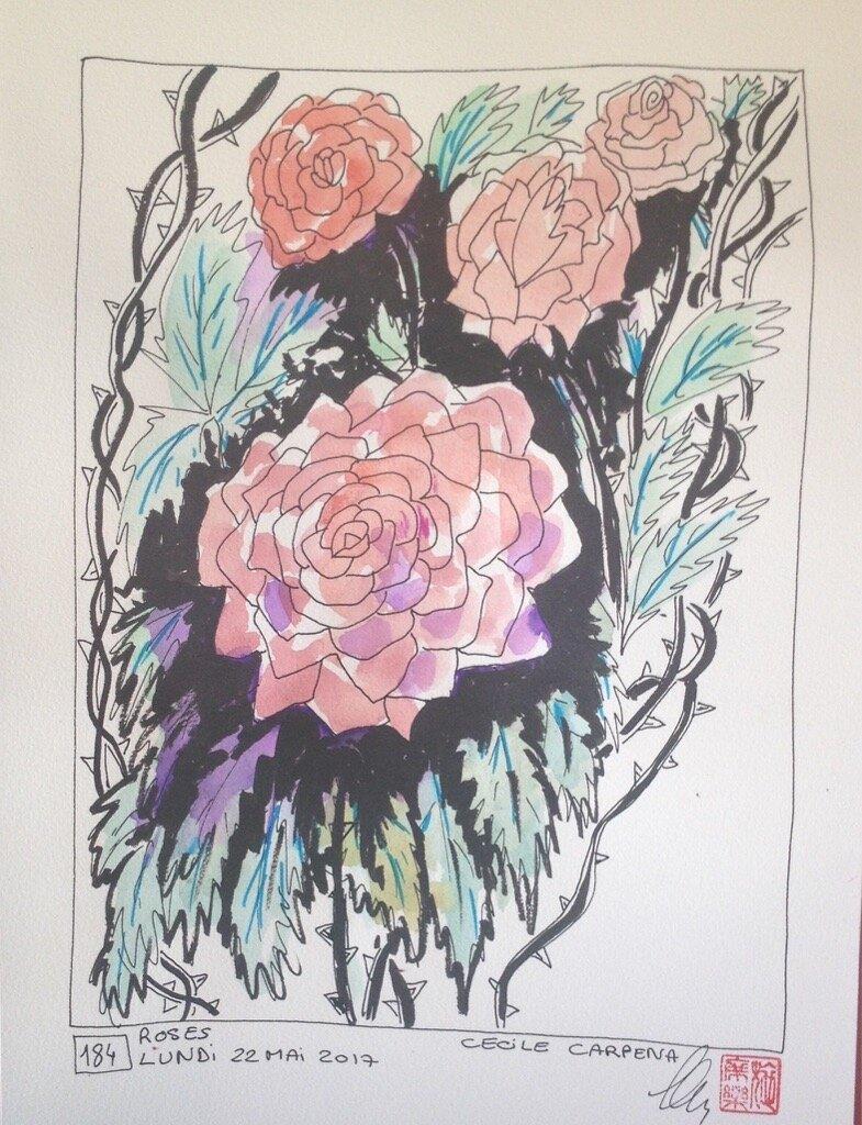 "Roses-dessin et haïku du matin n""184"