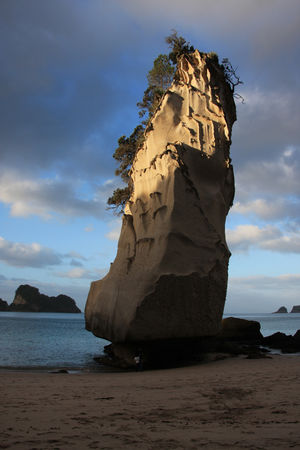 cathedral_cove6