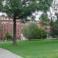 C'est pas beau un campus comme ca?