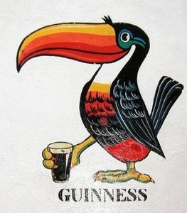 toucan_guiness2
