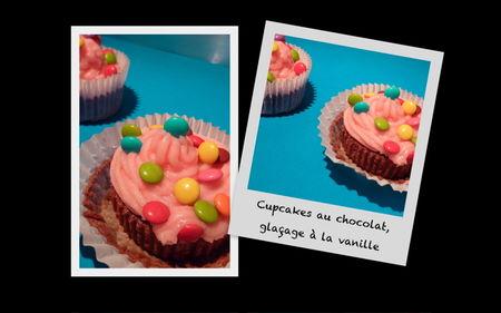 Cupcakes_choco_vanille
