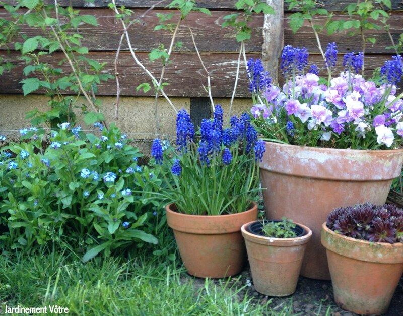 Au fond du jardin il y a jardinement v tre for Au coin du jardin