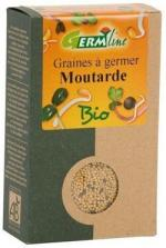 graines-a-germer-moutarde-e939568