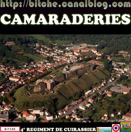___0___BITCHE__CAMARADERIES