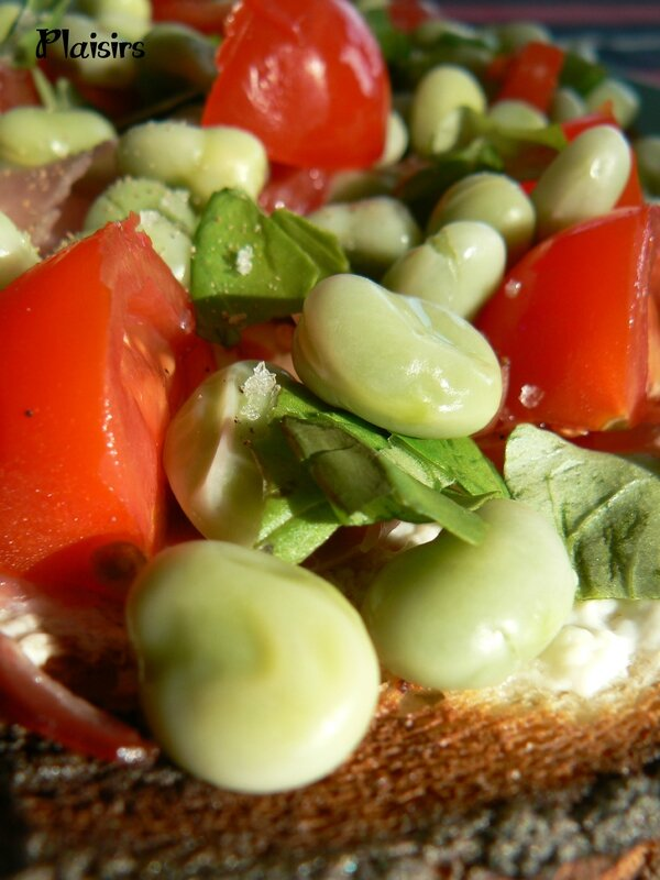 croque provencal (3)