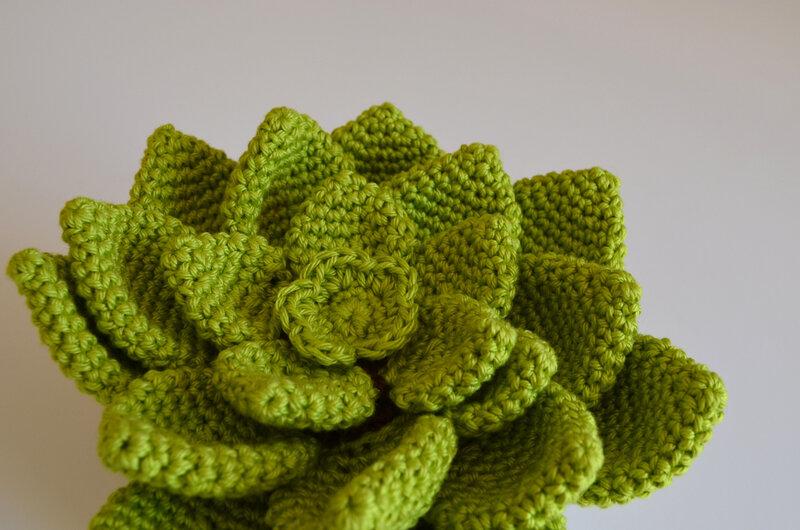 Pikiti la succulente-crochet-amigurumi-la chouette bricole (7)