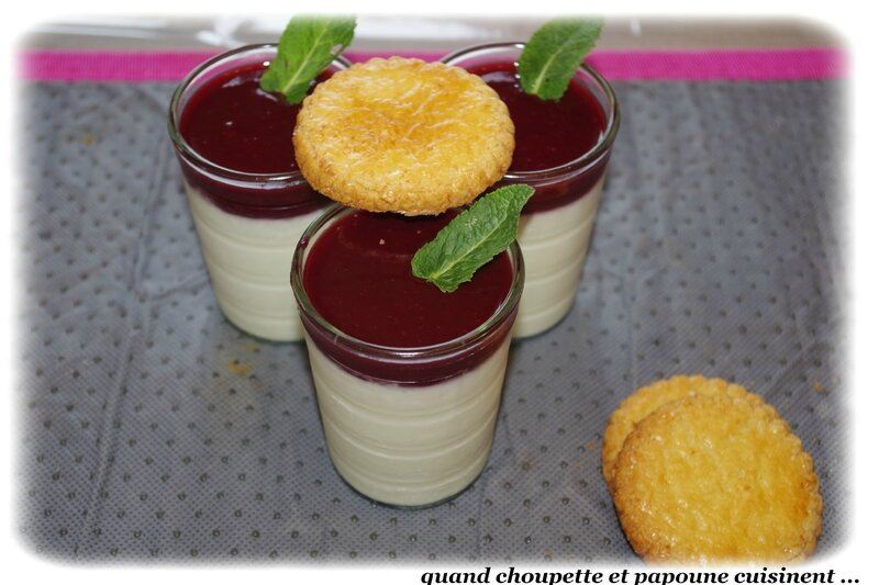 panna cotta purée de fruits rouges-9291