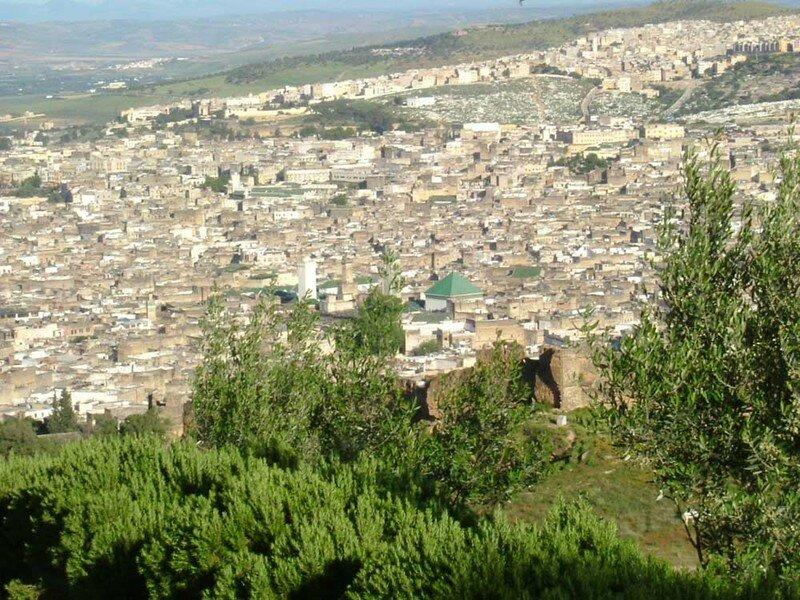 Vue Panoramique de la médina de Fes