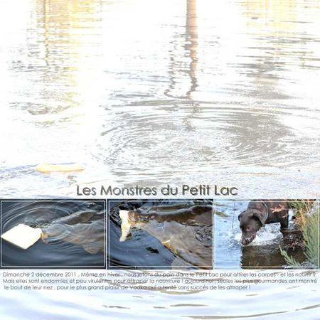 Copie_de_les_montres_du_petit_lac