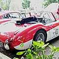2009-Annecy-Tulipes-Austin Healey-07
