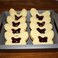 Biscuits miroirs-papillons