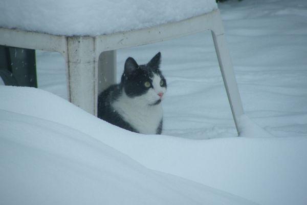 neige 2013 038