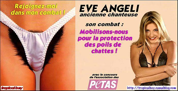 poil-de-chatte2