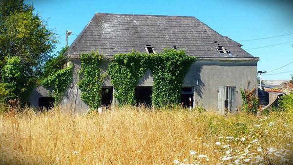 maison abandonnée Lprice (7)
