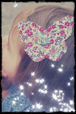 Papillon liberty
