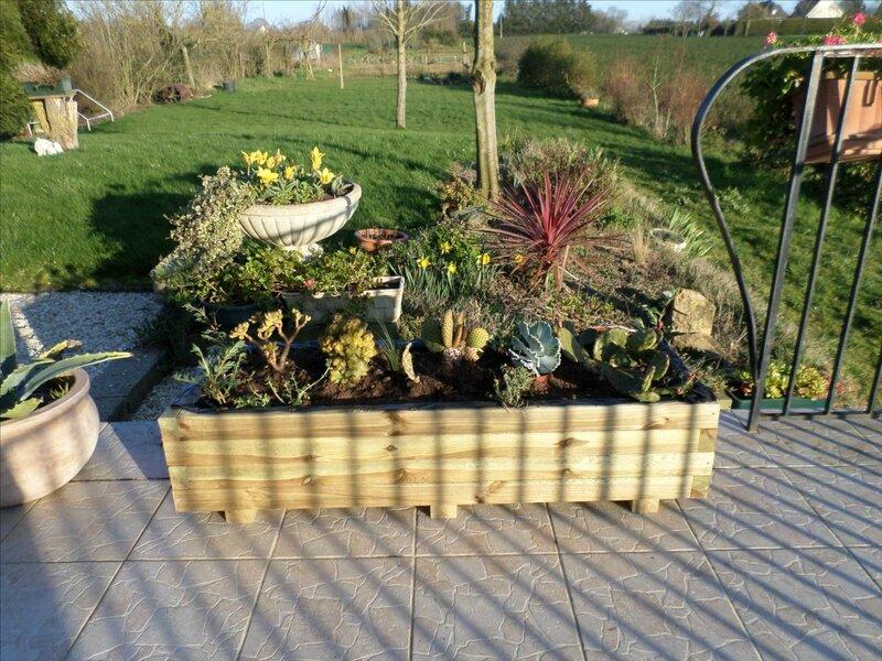 Premiers travaux au jardin les petits bonheurs de lysevaine - Jardin plante grasse ...