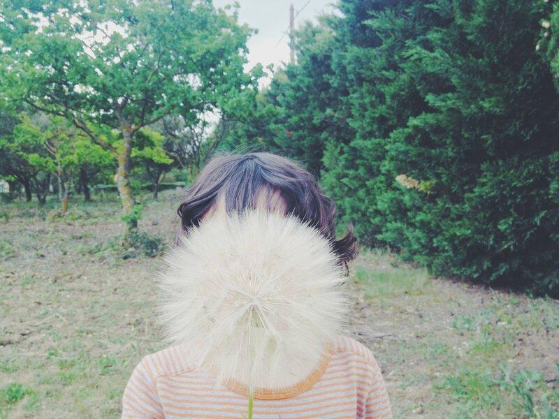 photo (8)